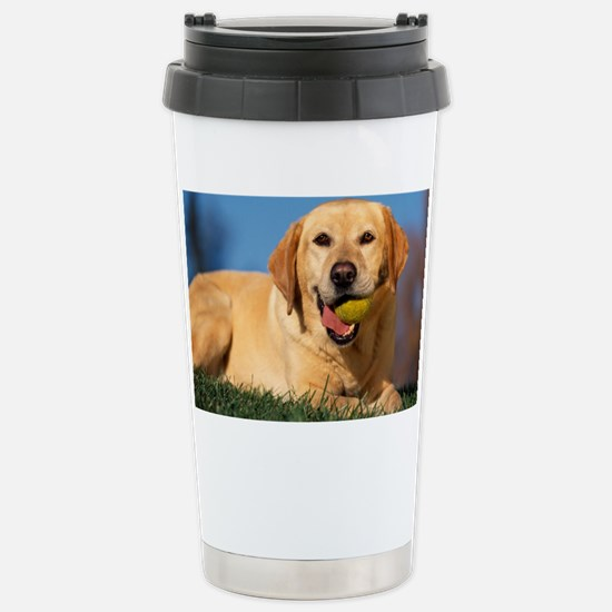 LabTB calendar Stainless Steel Travel Mug