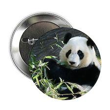"""panda2 - Copy 2.25"""" Button"""