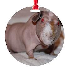 5 - Copy Ornament