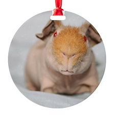 3 - Copy Ornament