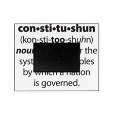 Constitushun 6 Black Picture Frame