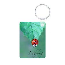443_iphone4_slidercaseLBUG Keychains
