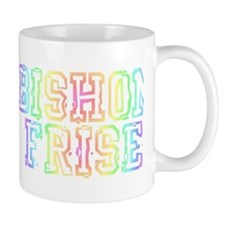 bishonFB bumper Mug