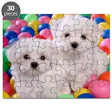 bishonFB panel Puzzle