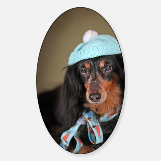 Hallie Dachshund Designs Knitted Ha Sticker (Oval)