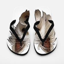 Westie Flip Flops