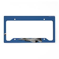 DSC_2997 License Plate Holder