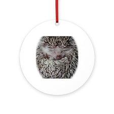 dennis - stocking Round Ornament