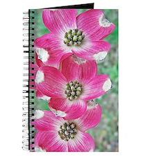 Pink Dogwood iPhone Hard Case, 3G, 3GS, 4 Journal