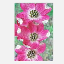 Pink Dogwood iPhone Hard  Postcards (Package of 8)