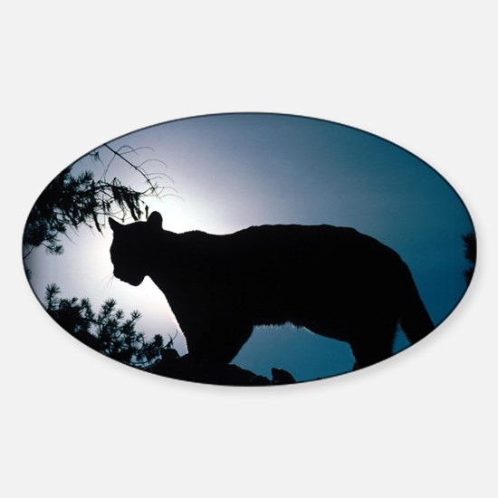 zazzle_cougar_silhouette_card1 Sticker (Oval)