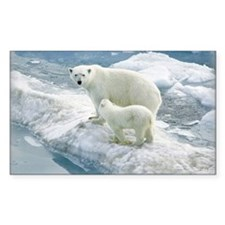 zazzle_bears_card1 Decal