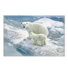 zazzle_bears_card1 Postcards (Package of 8)