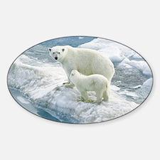 zazzle_bears_card1 Sticker (Oval)