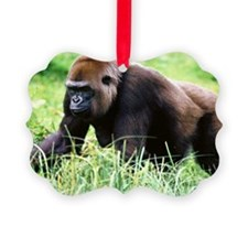zazzle_gorilla_card1 Ornament