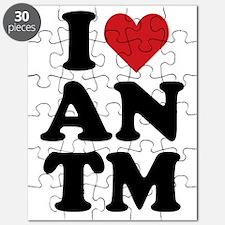 heartantm-01 Puzzle