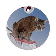 cpsled_stocking Round Ornament