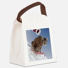 cpsled_stocking Canvas Lunch Bag