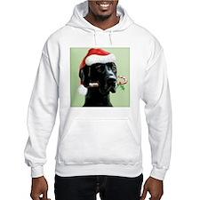 Great Dane - Gullivers Christmas Hoodie