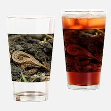 common lizard Drinking Glass