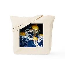 May 31 016 Tote Bag