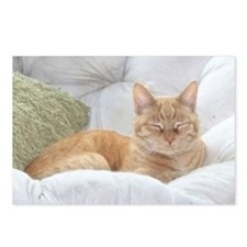 Simba Smiling Postcards (Package of 8)