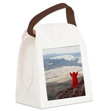 Bozette-at-Guadalupe-Mts-#3 Canvas Lunch Bag
