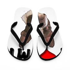 I Love My Boston Terrier Flip Flops