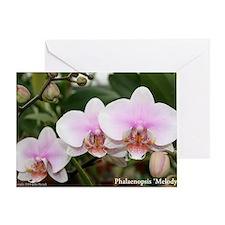 Phal. Melody Greeting Card