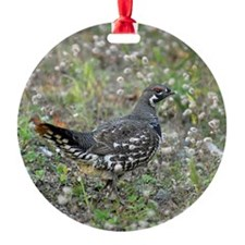 3.5x3 Ornament