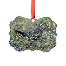 6x4_pcard Ornament