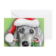 Weimaraner Christmas stuff Greeting Card