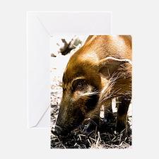 (2) Pig Profile  1966 Greeting Card