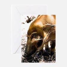 (3) Pig Profile  1966 Greeting Card