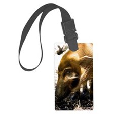 (3) Pig Profile  1966 Luggage Tag