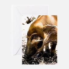 (4) Pig Profile  1966 Greeting Card