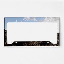 Sympathy3 License Plate Holder