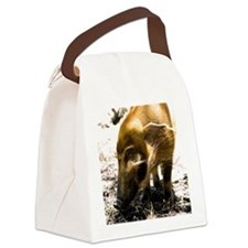 (15) Pig Profile  1966 Canvas Lunch Bag