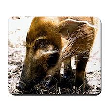 (12) Pig Profile  1966 Mousepad