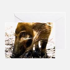 (12) Pig Profile  1966 Greeting Card