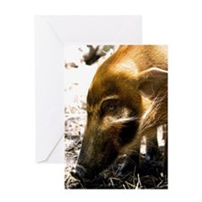 (9) Pig Profile  1966 Greeting Card