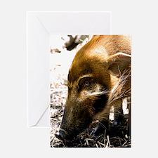 (9) Pig Profile  1966 Greeting Card