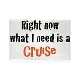 Cruise Magnets