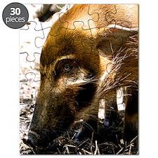 (10) Pig Profile  1966 Puzzle