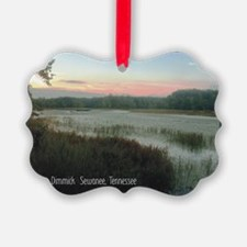2010 pics for 2011 Lake Dimmick Ornament
