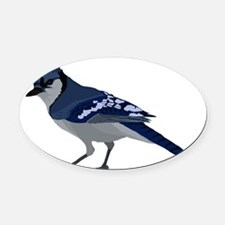 blue jay Oval Car Magnet