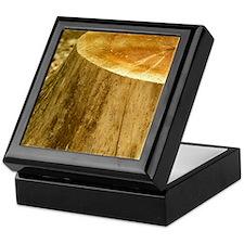 P1090087 2 Keepsake Box