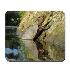 pondturtle16by20poster Mousepad