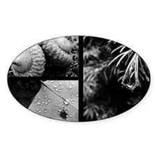 collage b and w green nature Decal
