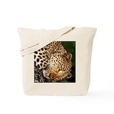 leo face ipad Tote Bag